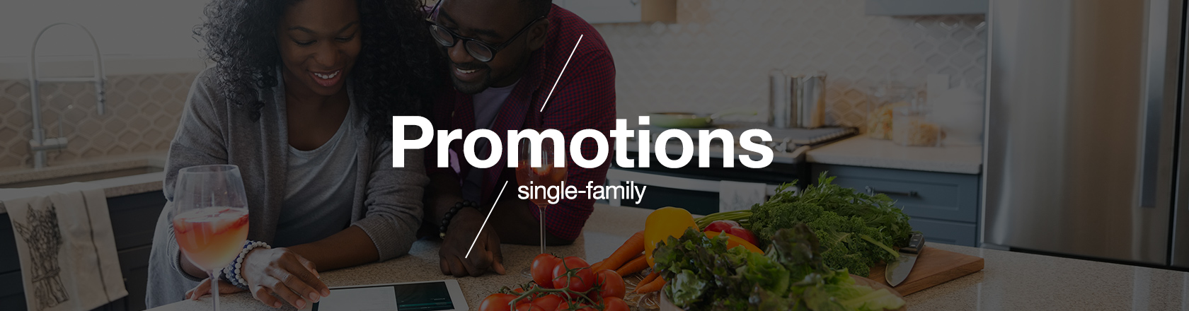 Single-Family Promotions banner