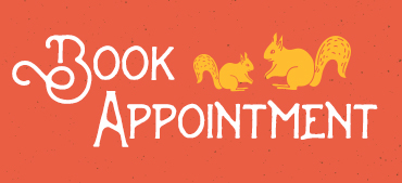 Book an Appointment graphic