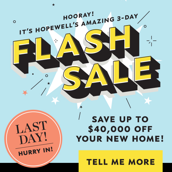 Hopewell's Amazing 3-Day Flash Sale Graphic - Click Here to Learn More